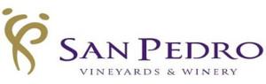VinaSanPedro_Logo